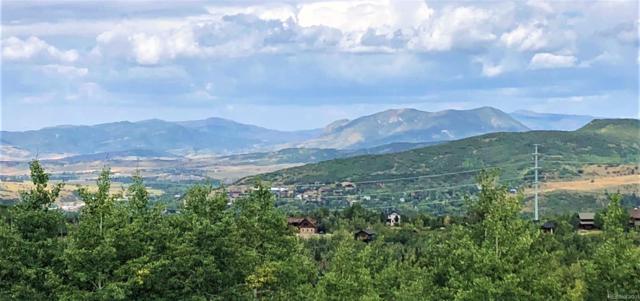 325 Boulder Ridge Road, Steamboat Springs, CO 80487 (MLS #1913586) :: 8z Real Estate