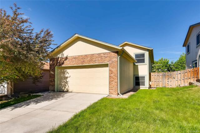 7115 Fenton Circle, Arvada, CO 80003 (#1913623) :: The Heyl Group at Keller Williams