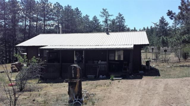 788 12th Trail, Cotopaxi, CO 81223 (#1915294) :: Structure CO Group