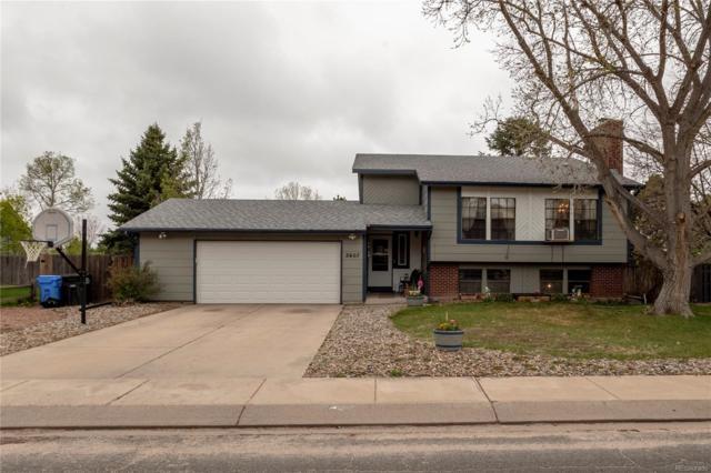 2607 Zephyr Drive, Colorado Springs, CO 80920 (#1916473) :: Venterra Real Estate LLC