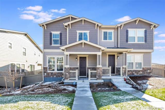 2985 Low Meadow Boulevard, Castle Rock, CO 80109 (#1917047) :: Sultan Newman Group