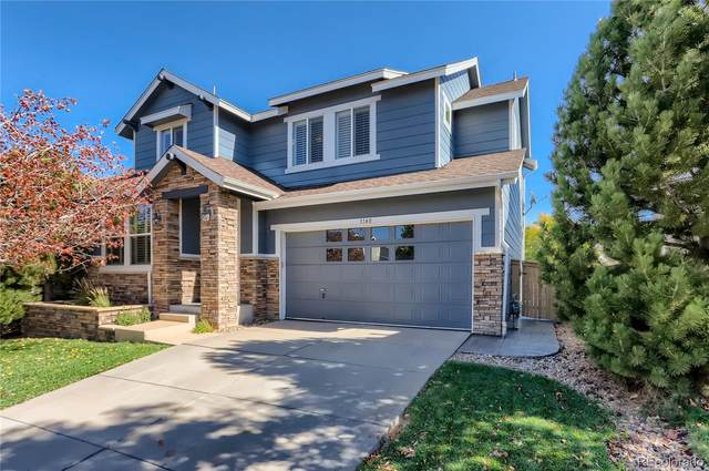 3140 Redhaven Way, Highlands Ranch, CO 80126 (#1919701) :: The DeGrood Team