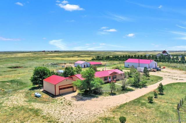 10095 N Yoder Road, Calhan, CO 80808 (#1920004) :: The Gilbert Group