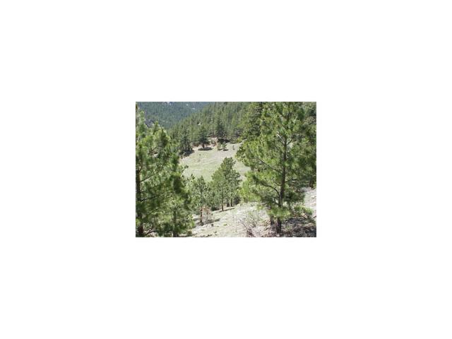 0 Lefthand Canyon Drive, Jamestown, CO 80455 (MLS #1921033) :: 8z Real Estate