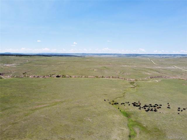 0002 County Road 77, Calhan, CO 80808 (#1923586) :: The DeGrood Team