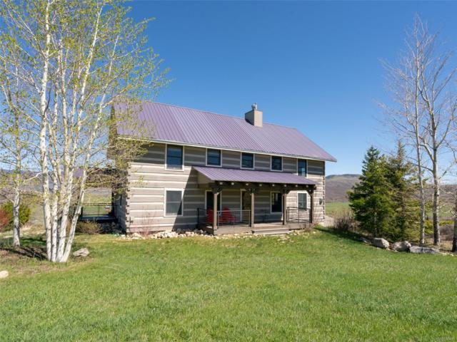 29250 County Road 14A, Steamboat Springs, CO 80487 (#1923720) :: 5281 Exclusive Homes Realty