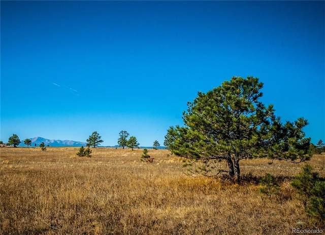 4207 Silver Nell Drive, Colorado Springs, CO 80908 (#1929337) :: Hudson Stonegate Team