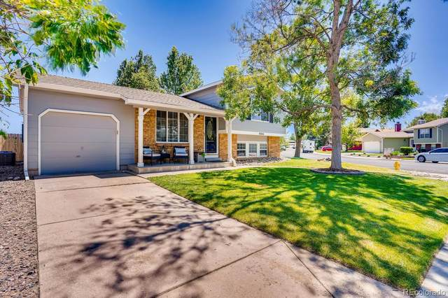16999 Blue Mist Circle, Parker, CO 80134 (#1930128) :: Bring Home Denver with Keller Williams Downtown Realty LLC