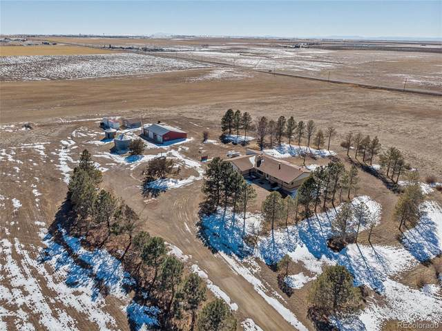 6020 Highway 79, Bennett, CO 80102 (#1932461) :: The Dixon Group