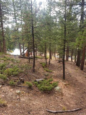 401 Falcons Rest Place, Woodland Park, CO 80863 (#1933114) :: The Gilbert Group