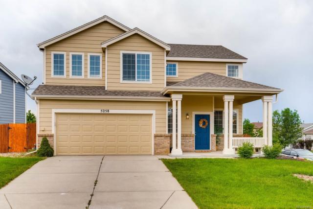 5258 Suffolk Circle, Castle Rock, CO 80104 (#1933252) :: Wisdom Real Estate
