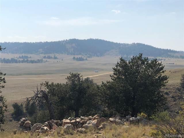 840 Arapaho Road, Hartsel, CO 80449 (MLS #1933566) :: Find Colorado