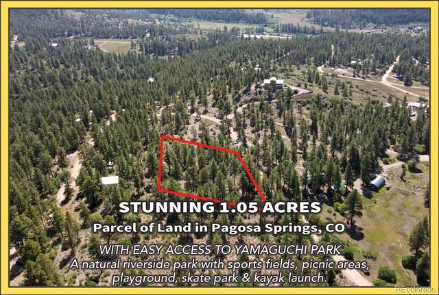 117 Oak Place, Pagosa Springs, CO 81147 (#1938593) :: The HomeSmiths Team - Keller Williams