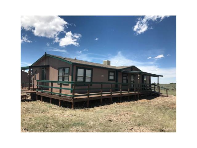 16600 Pike Trail, San Luis, CO 81152 (MLS #1939383) :: 8z Real Estate