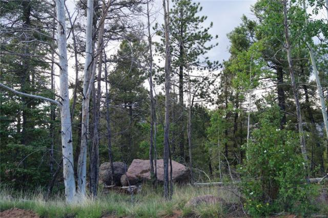 3578 N Mountain Estates Road, Florissant, CO 80816 (#1943223) :: The Heyl Group at Keller Williams