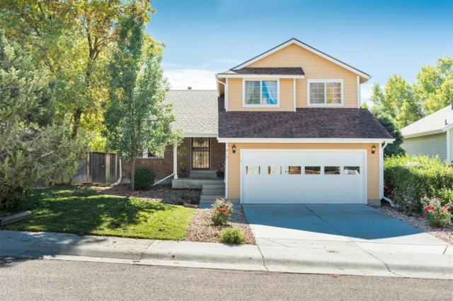 912 Thames Street, Highlands Ranch, CO 80129 (#1943710) :: The City and Mountains Group