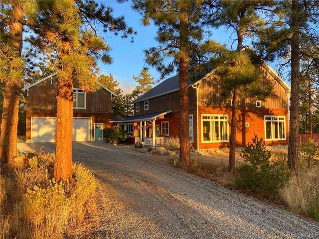 13799 County Road 261, Nathrop, CO 81236 (#1945778) :: You 1st Realty