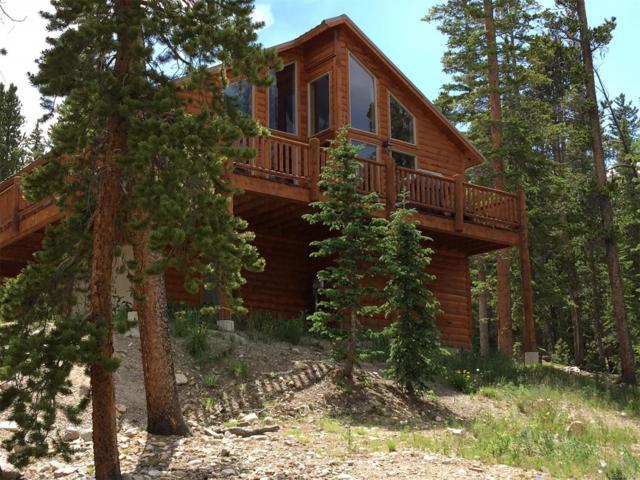 173 Gold Trail Cutoff, Fairplay, CO 80440 (MLS #1948394) :: 8z Real Estate