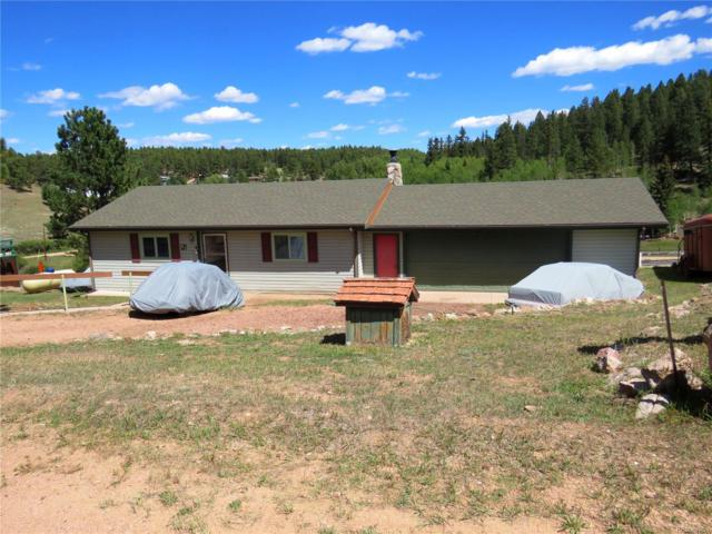92 Dogie Trail, Florissant, CO 80816 (MLS #1953009) :: 8z Real Estate