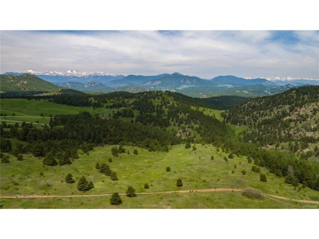 000 Falcon View Road, Indian Hills, CO 80454 (MLS #1953092) :: 8z Real Estate