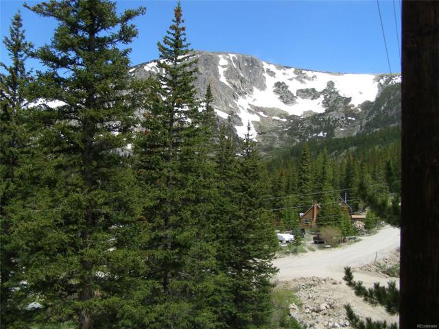 000 Mine Road, Idaho Springs, CO 80452 (MLS #1953452) :: 8z Real Estate