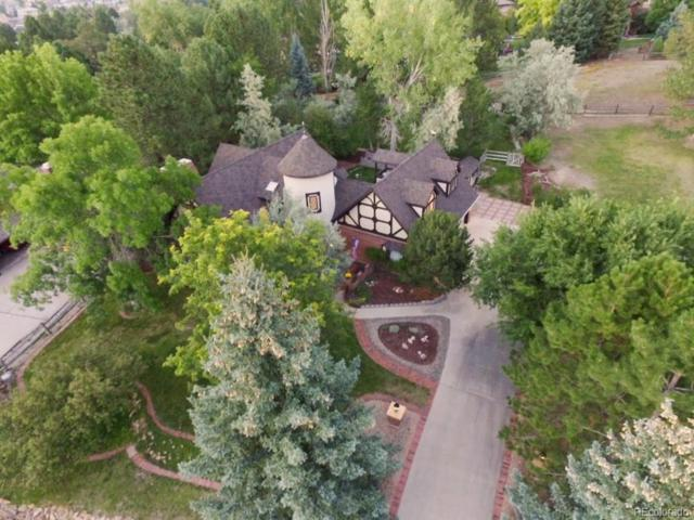 7416 E Windlawn Way, Parker, CO 80134 (#1955161) :: The Peak Properties Group