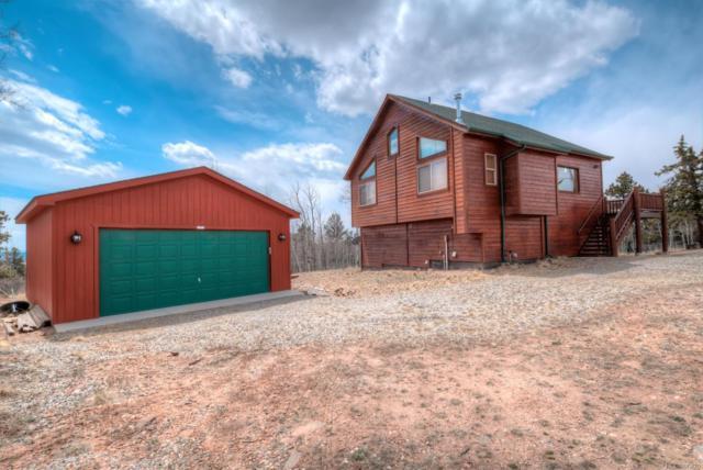 626 Ute Trail, Como, CO 80432 (#1955229) :: Colorado Home Realty