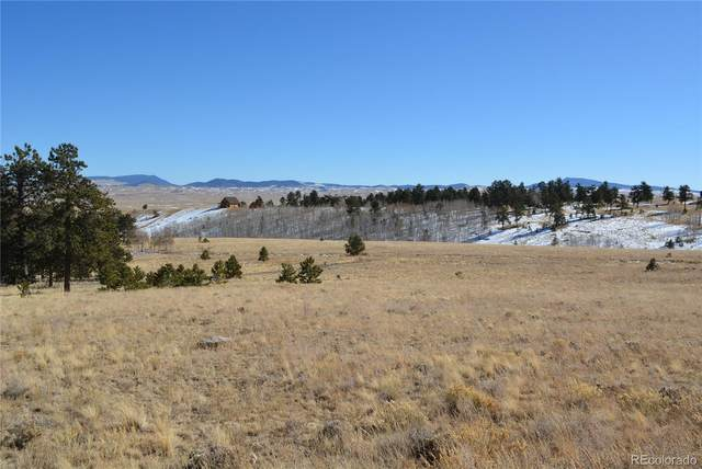 183 Brahma Circle, Hartsel, CO 80449 (MLS #1957243) :: Keller Williams Realty