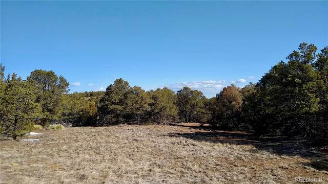 0 Rugby Mines Road, Aguilar, CO 81020 (#1958628) :: The DeGrood Team