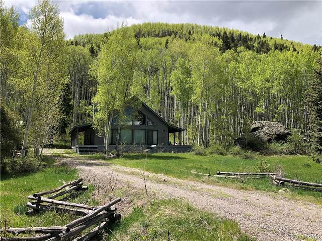 410 Elk Meadow Run, Antonito, CO 81120 (MLS #1960343) :: 8z Real Estate