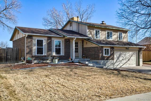 7680 S Garland Street, Littleton, CO 80128 (MLS #1962693) :: 8z Real Estate