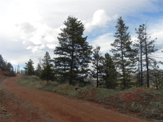 5119 Cheyenne Drive, Larkspur, CO 80118 (#1963515) :: The HomeSmiths Team - Keller Williams