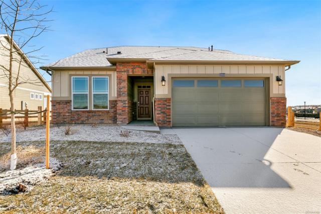 15546 Spruce Circle, Thornton, CO 80602 (MLS #1964058) :: 8z Real Estate