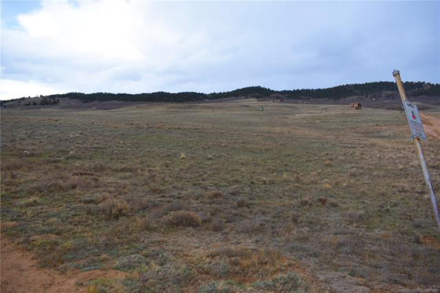 186 Link Road, Jefferson, CO 80432 (MLS #1964571) :: 8z Real Estate