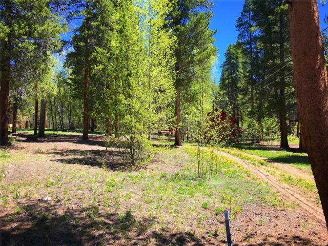 1942 Spring Circle, Leadville, CO 80461 (#1966803) :: The DeGrood Team