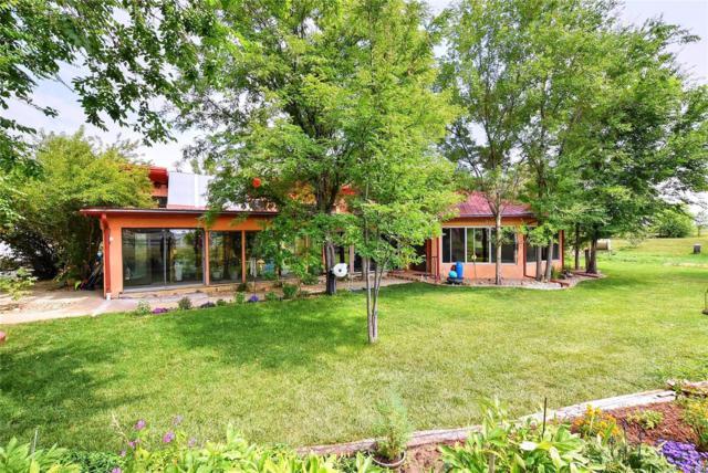 1246 Doris Circle, Erie, CO 80516 (#1967230) :: The Peak Properties Group