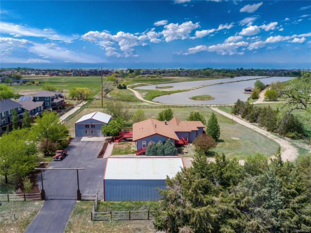 9501 County Road 13, Longmont, CO 80504 (MLS #1967924) :: 8z Real Estate