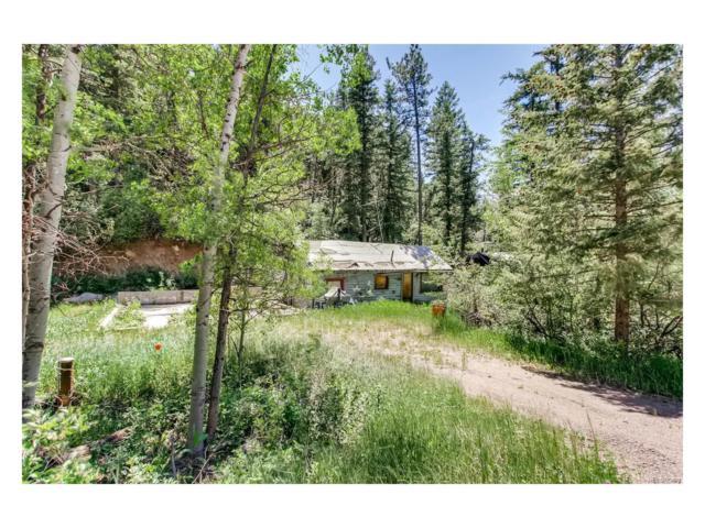 9318 S Murphy Gulch Road, Littleton, CO 80127 (MLS #1969083) :: 8z Real Estate