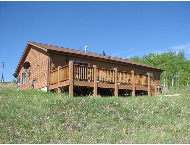 3156 High Creek Road, Fairplay, CO 80440 (#1971250) :: 5281 Exclusive Homes Realty