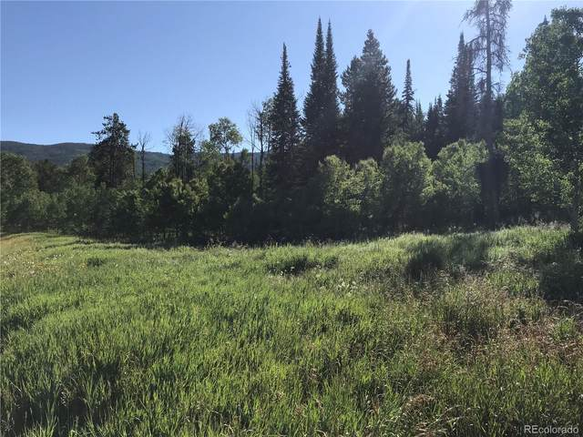 33181 Wenatchi Trail, Oak Creek, CO 80467 (MLS #1976667) :: 8z Real Estate