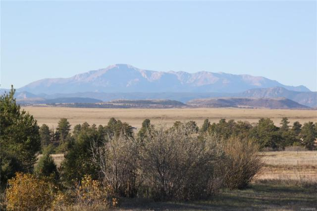 8500 Steeplechase Drive, Franktown, CO 80116 (MLS #1977950) :: 8z Real Estate