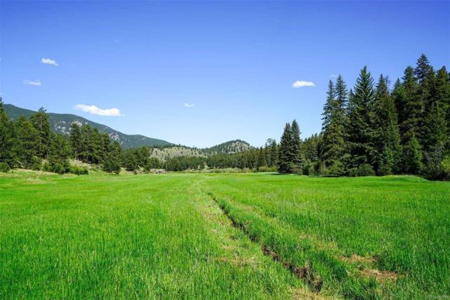 2067 Evans Ranch Road, Evergreen, CO 80439 (#1979318) :: Arnie Stein Team | RE/MAX Masters Millennium