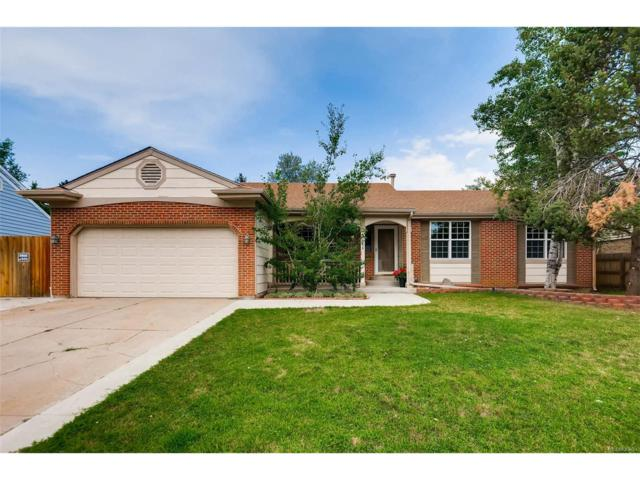 5586 S Sedalia Street, Centennial, CO 80015 (MLS #1979761) :: 8z Real Estate