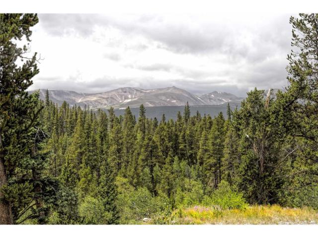0 Beaver Creek Road, Alma, CO 80420 (MLS #1980139) :: 8z Real Estate