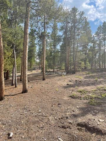 199 Lodgepole Drive, Leadville, CO 80461 (MLS #1983936) :: Bliss Realty Group