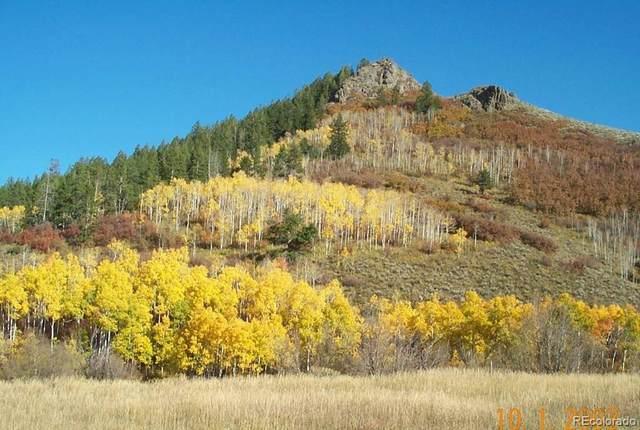 23520 Stagehorn Trail, Oak Creek, CO 80467 (#1985401) :: The Margolis Team