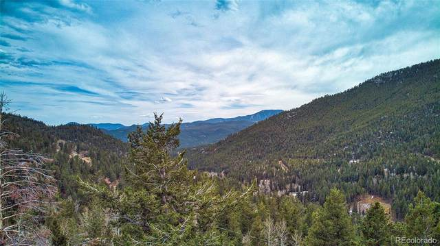 Grouse Way, Evergreen, CO 80439 (#1986477) :: Arnie Stein Team | RE/MAX Masters Millennium