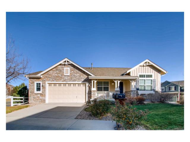 5853 Noble Court, Golden, CO 80403 (#1988187) :: The City and Mountains Group