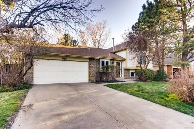 19030 E 45th Avenue, Denver, CO 80249 (#1988870) :: Keller Williams Action Realty LLC
