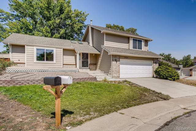 7464 E Long Avenue, Centennial, CO 80112 (#1989508) :: The Gilbert Group